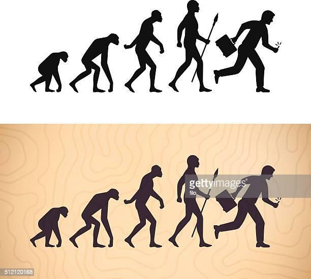 modern evolution - paleolitico stock illustrations