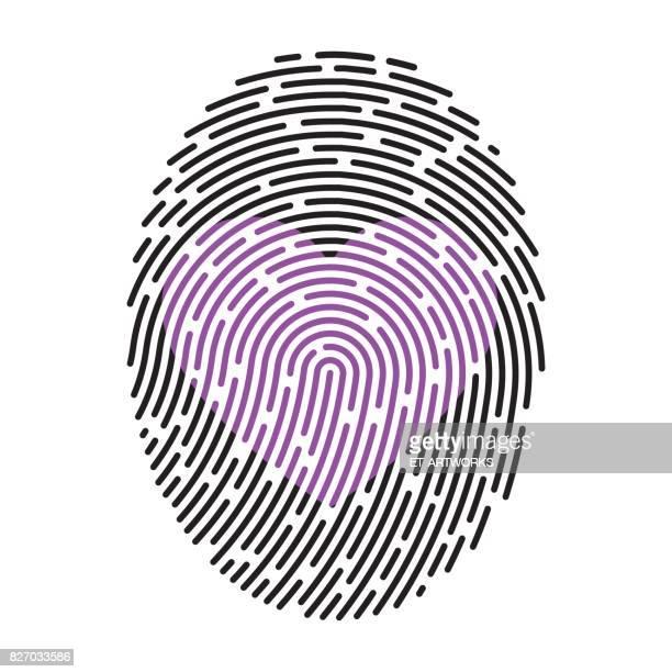 modern fingerprint - menschliches körperteil stock illustrations