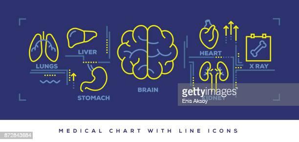 moderne flat-line-design-konzept des medical - panorama stock-grafiken, -clipart, -cartoons und -symbole