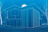 Modern house, architectural illustration. Night scene, trees