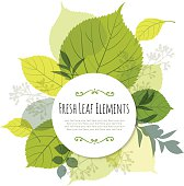 Modern Leaf Design with Copyspace