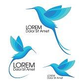 Modern Set . Blue birds, Colibri in flight, trendy minimalistic template design for symbols, emblems, symbols.