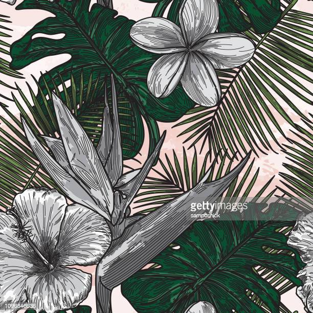modern tropical floral pattern - tropical bush stock illustrations