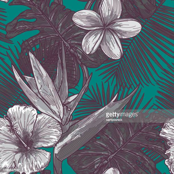 ilustrações, clipart, desenhos animados e ícones de moderno padrão floral tropical - tropical