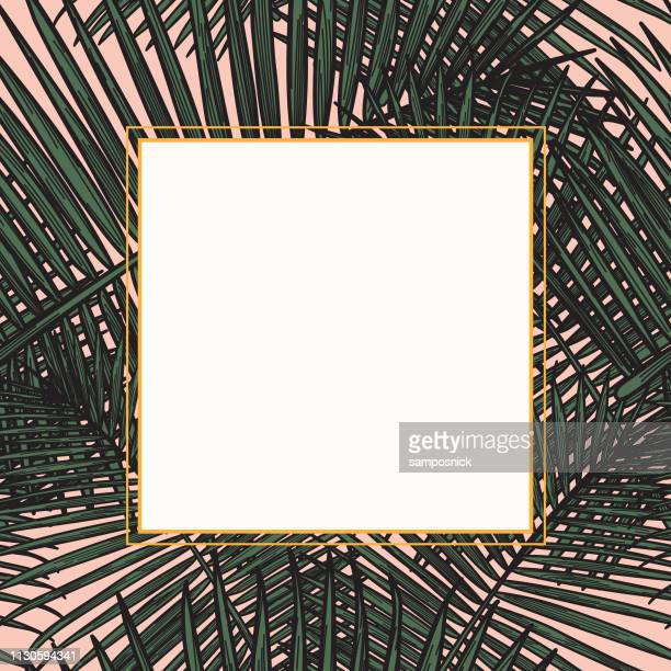 modern tropical palm frond frame - millennial pink stock illustrations