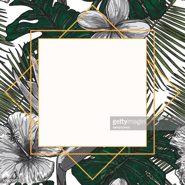 Moderna planta Tropical marco plantilla