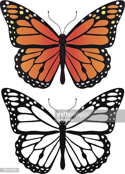 ilustraciones, imágenes clip art, dibujos animados e iconos de stock de mariposa monarca - mariposa monarca