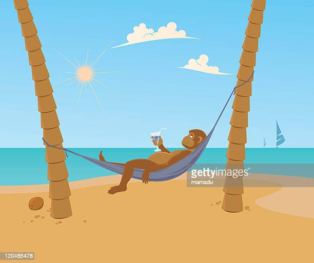monkey beach - cocos island costa rica stock illustrations, clip art, cartoons, & icons