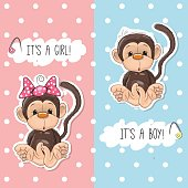 Monkey boy and girl