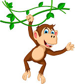 monkey cartoon hanging