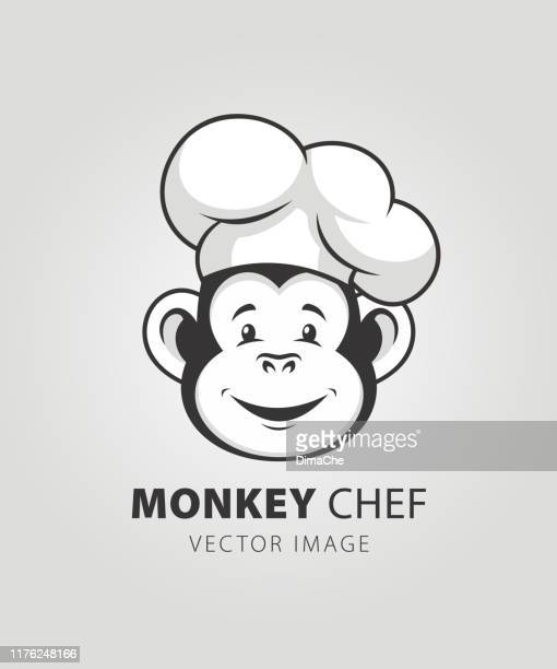 ilustrações, clipart, desenhos animados e ícones de mascote do caráter do cozinheiro chefe do macaco - chapéu de cozinheiro