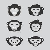 monkey design set