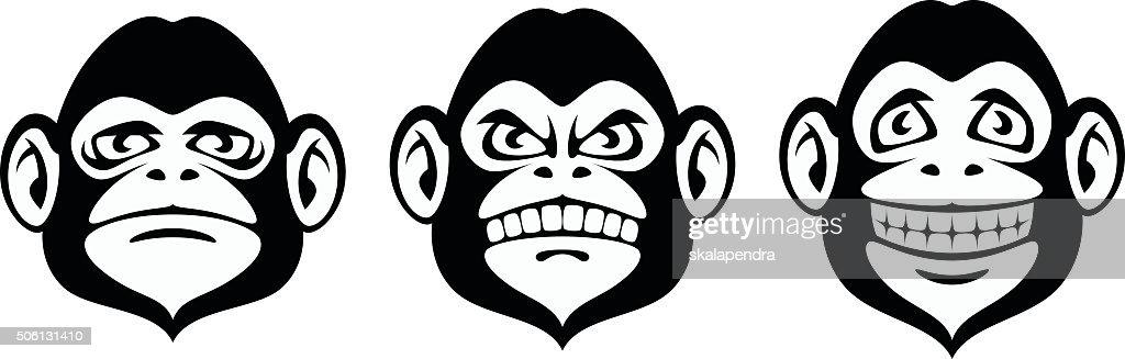 Monkey emotion