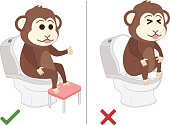 Monkey feel good and bad practice in use toilet.