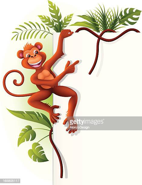 monkey hanging on a sign - liana stock illustrations, clip art, cartoons, & icons