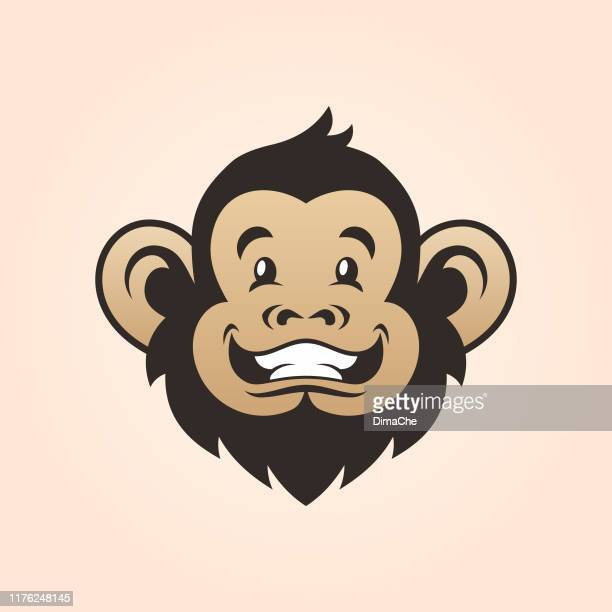 monkey head. smiling monkey face - chimpanzee teeth stock illustrations