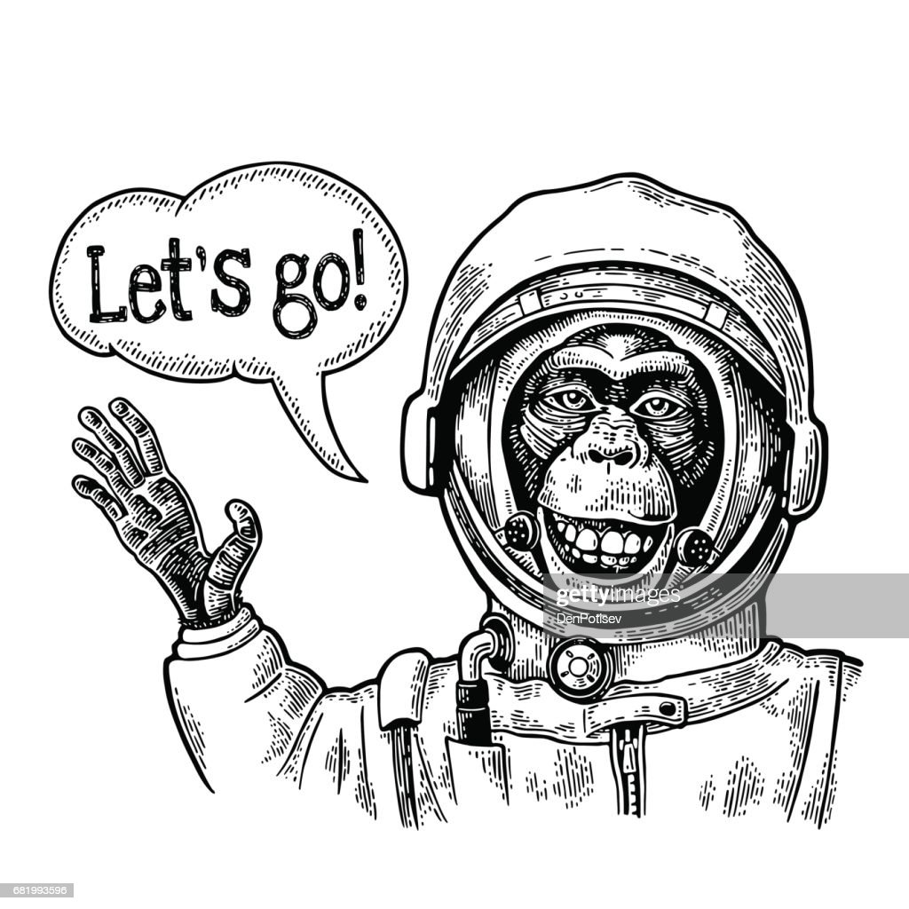 Monkey in astronaut suit smiles and waves his hand. Vintage black engraving : Vector Art