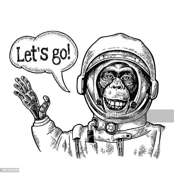 Monkey in astronaut suit smiles and waves his hand. Vintage black engraving