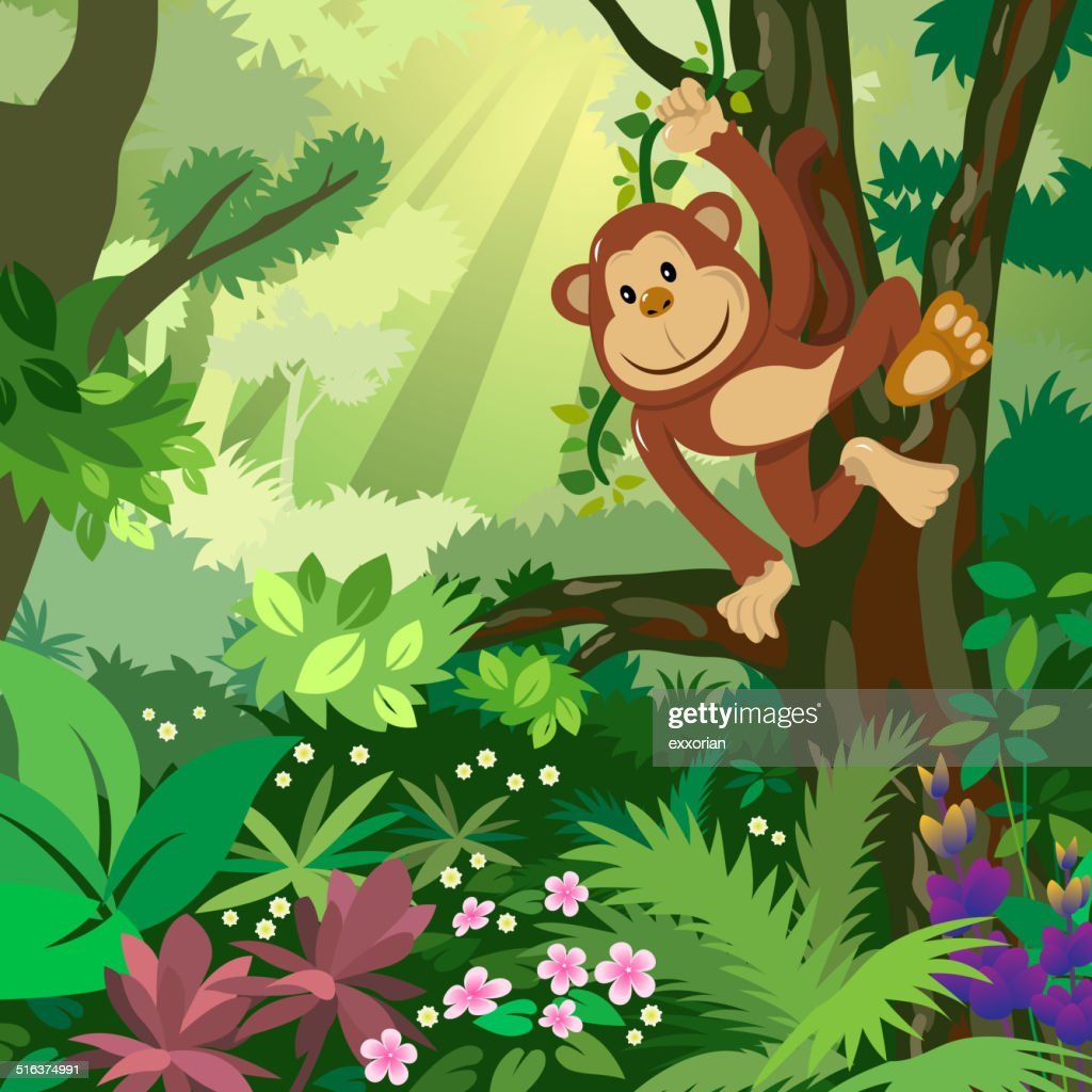 Monkey in the Forest : stock illustration