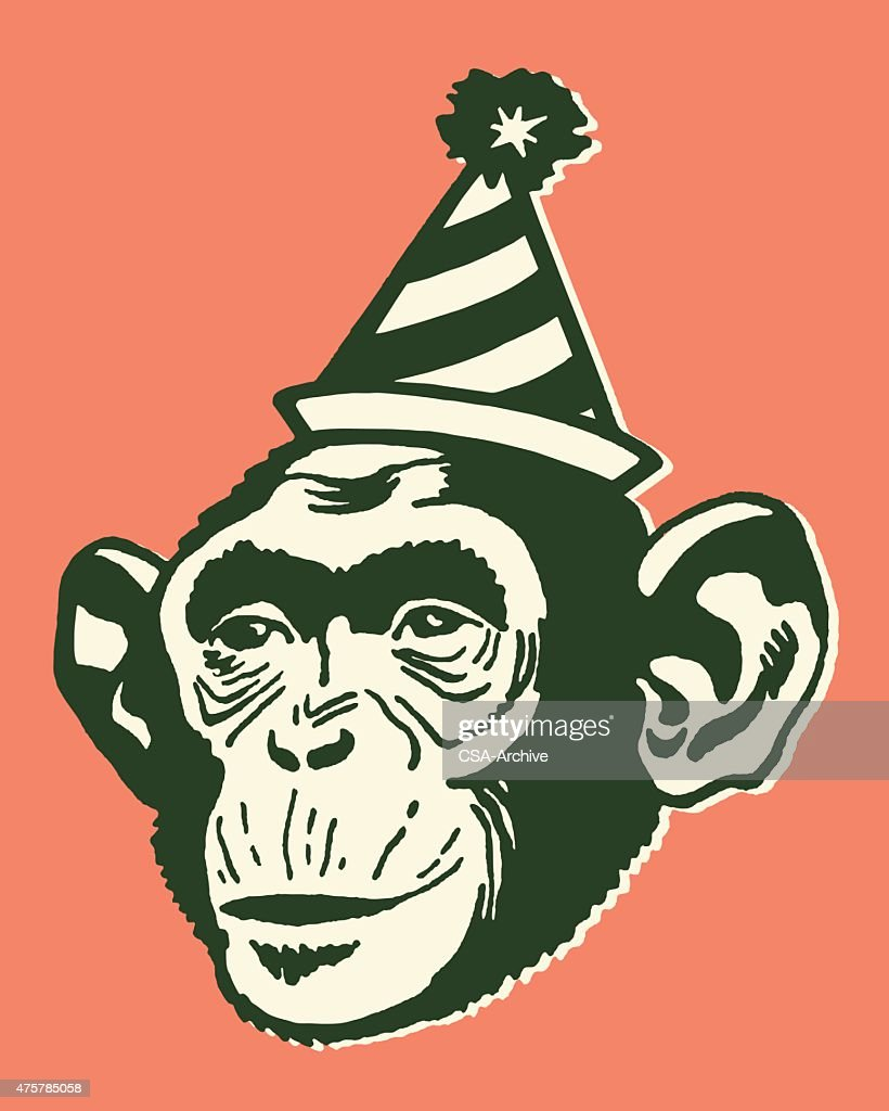 Monkey Wearing Party Hat : stock illustration