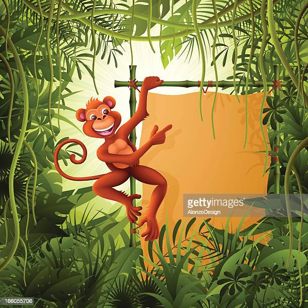 Monkey with banner in the jungle