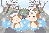 monkey with hot spring