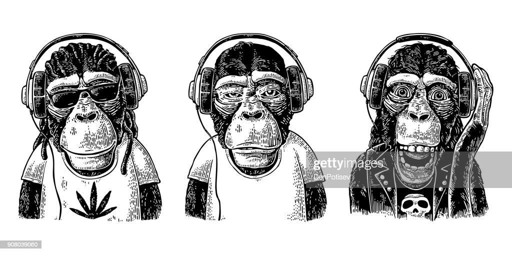 Monkeys in headphones. Hipster with dreadlocks, rocker, rastaman. Vintage engraving