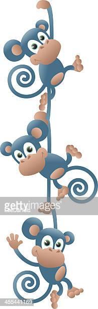Monkeys swinging in a chain