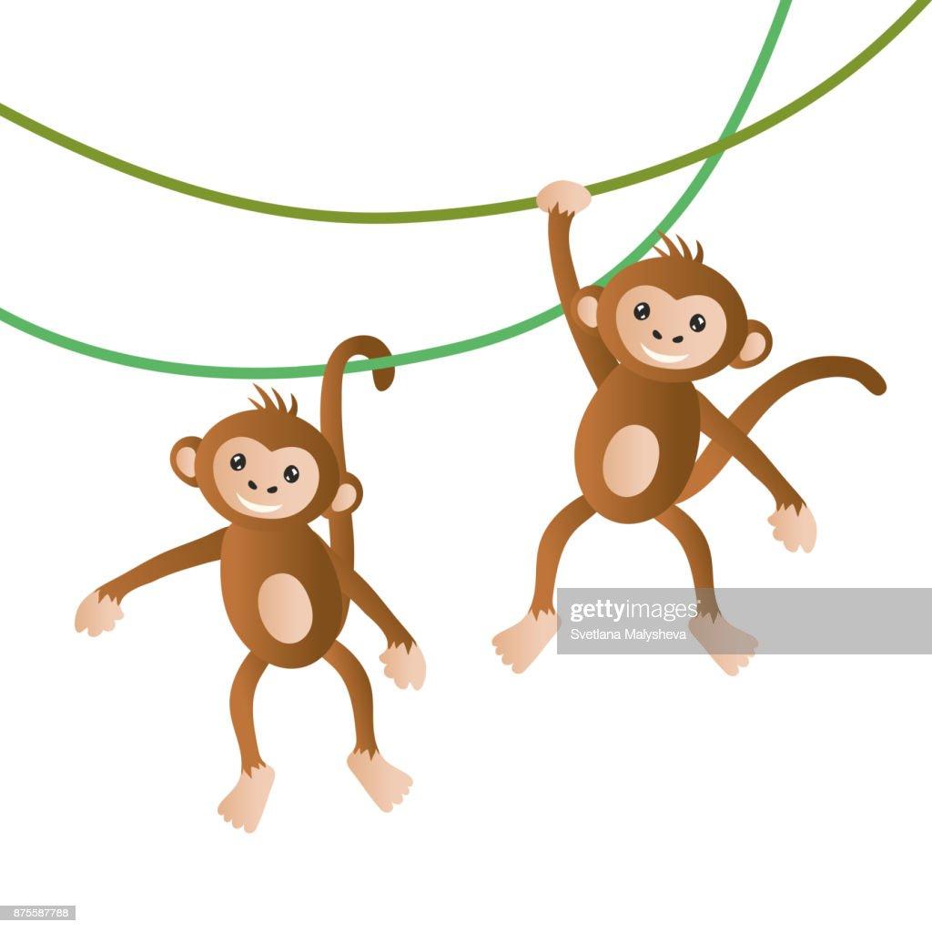Monkeys vector illustration