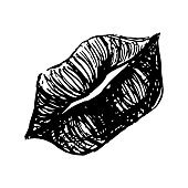 Monochrome black and white lips sketched line art vector