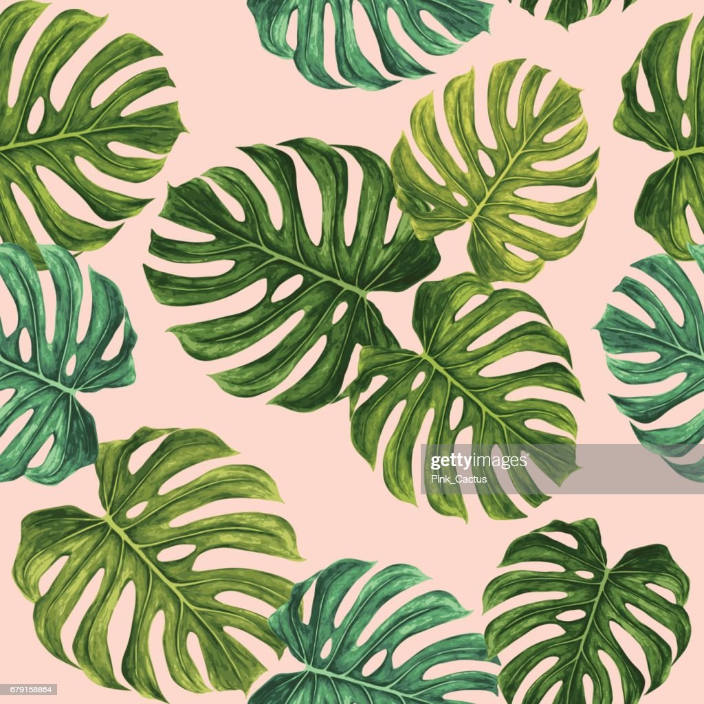 Monstera Leaf Vector Pattern