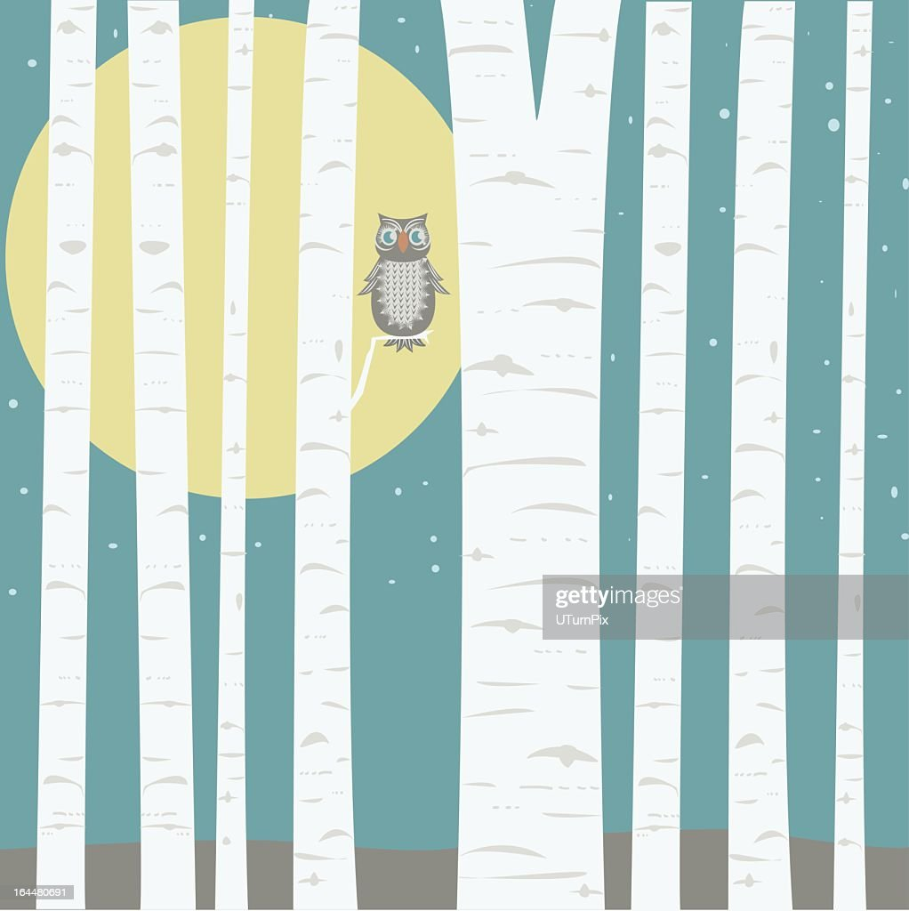 Moonlit forest cartoon with small brown owl