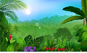 Morning in jungle rainforest background