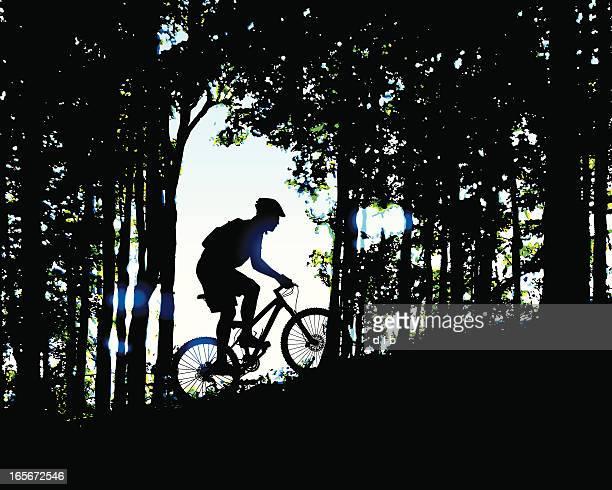 ilustrações de stock, clip art, desenhos animados e ícones de manhã de bicicleta de montanha corrida na floresta - mountain bike