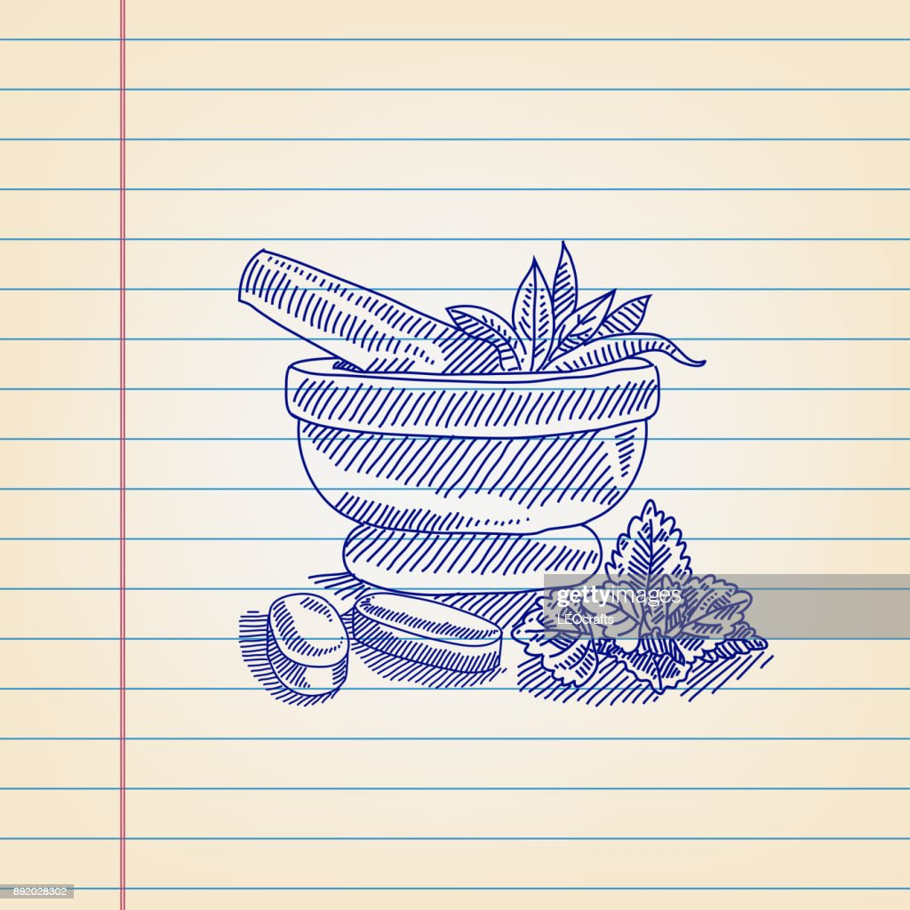 Mortar And Pestle With Herbs Drawing On Ruled Paper Vector Art ... for Mortar And Pestle Drawing  589ifm