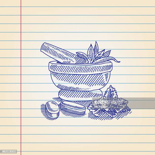 mortar and pestle with herbs drawing on ruled paper - mortar and pestle stock illustrations, clip art, cartoons, & icons
