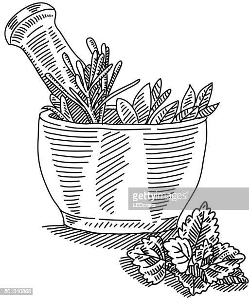 mortar with herbals drawing - mortar and pestle stock illustrations, clip art, cartoons, & icons