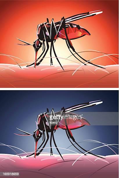 stockillustraties, clipart, cartoons en iconen met mosquito bites day and night - insectenbeet