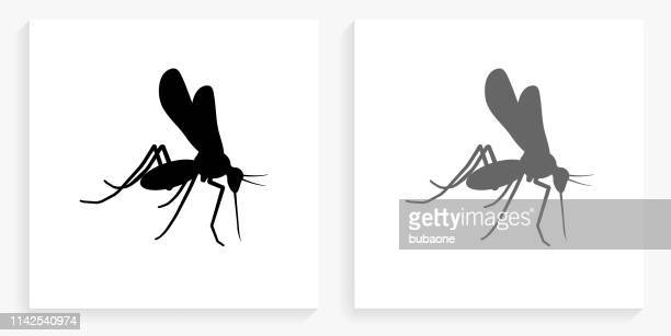 ilustraciones, imágenes clip art, dibujos animados e iconos de stock de icono cuadrado de mosquito blanco y negro - mosquito