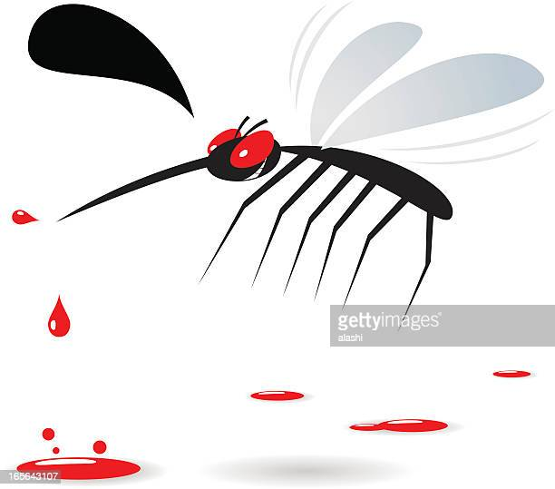 illustrations, cliparts, dessins animés et icônes de mosquito-sang sucer - moustique