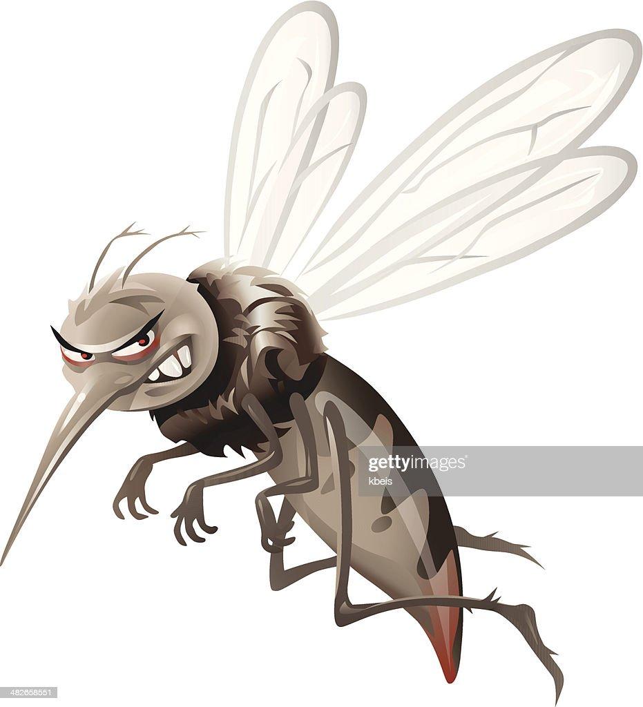 Mosquito : Vector Art