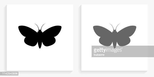 Moth Black and White Square Icon