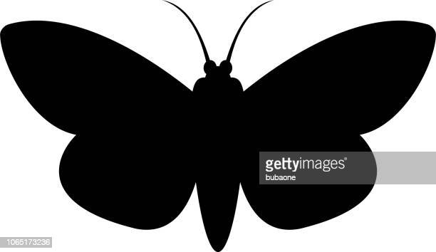 Moth Icon with Long Shadow