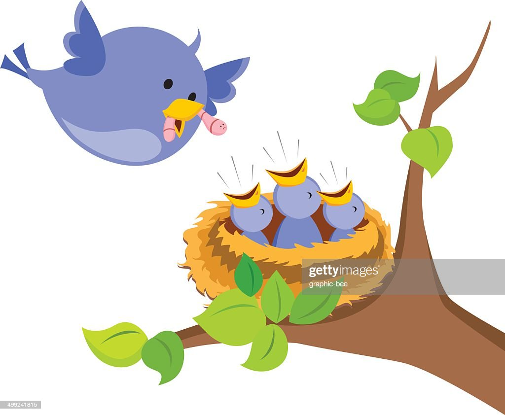 Mother bird love
