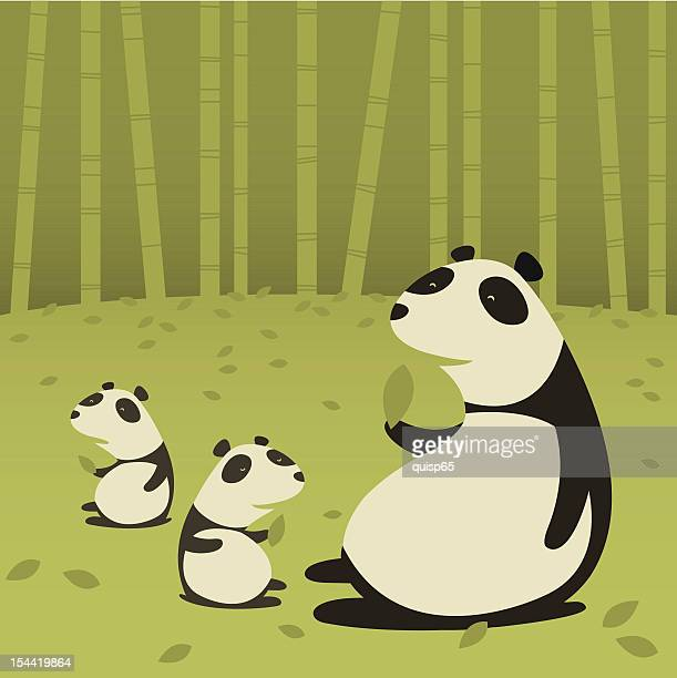 Illustrations Et Dessins Animes De Foret De Bambous Getty Images