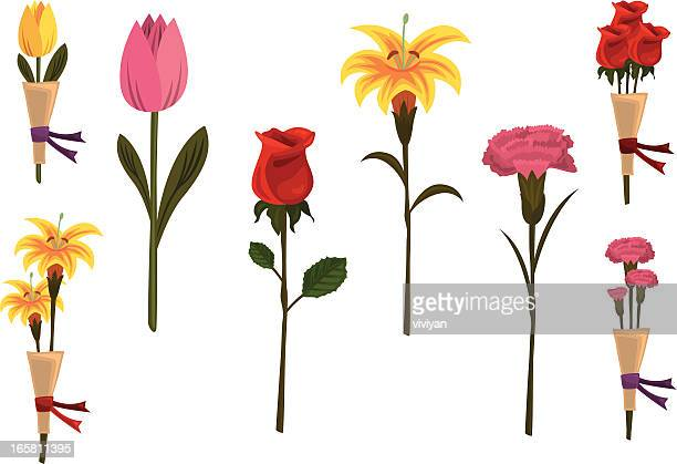 mothers day flowers - carnation flower stock illustrations, clip art, cartoons, & icons