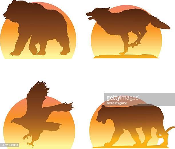 ilustraciones, imágenes clip art, dibujos animados e iconos de stock de siluetas de animales de las montañas - puma