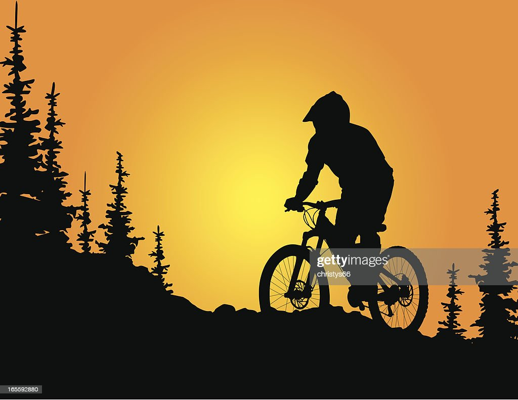 mountain biker silhouette at sunset vector art