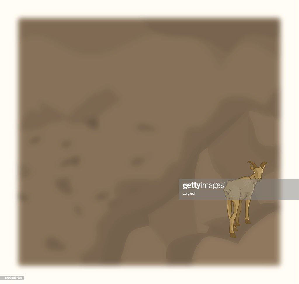 Mountain Goat on a rock : stock illustration