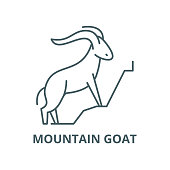 Mountain goat vector line icon, linear concept, outline sign, symbol